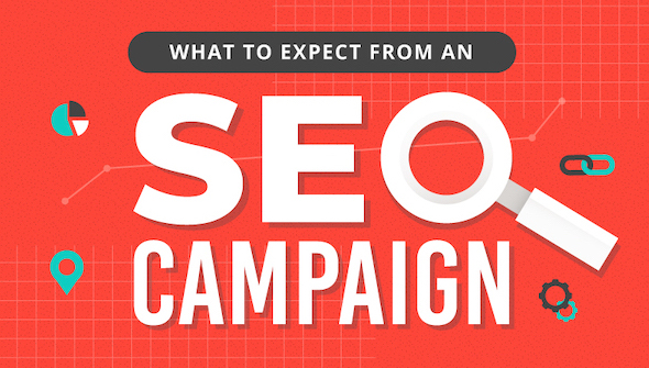 what_to_expect_from_an_SEO_campaign infographic